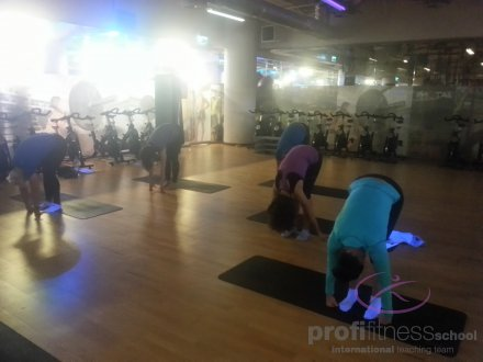 PFS STRETCHING PLUS